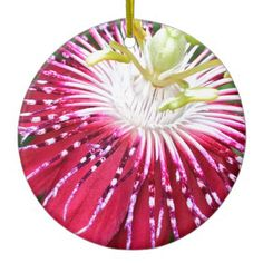 Pink Passionflower Dble-sided Ornament - flowers floral flower design unique style