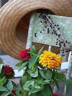 Hermann Hesse, Fruit Trees, Flower Beds, Grapevine Wreath, Grape Vines, Berries, Garden, Flowers, Plants