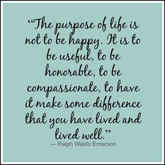 The purpose of life....