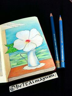 2014_08_25_flower_01_s My friend Kurumi gave me a  rose mallow.  Thank you!  for this drawing I used : Faber castell polychromos Holbein artists colored pencils Moleskine sketchbook  © Belta(Mayumi Wakabayashi)