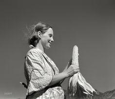 Shorpy Historical Photo Archive :: A Bumper Crop: 1939