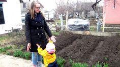 Мой сад в марте. Крым