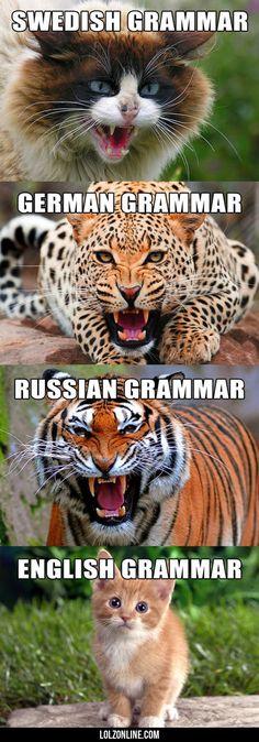 Types Of Grammar#funny #lol #lolzonline