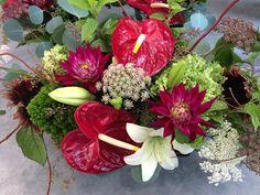 Anthurium Flowers lindenhillsflorist.com