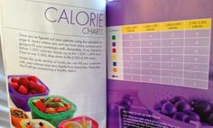 Calorie counter 21 day fix, 21 day fix meal plan, 21 day fix containers