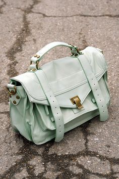 mint proenza schouler ps1 bag