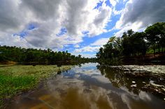 Madhobpur Lake, Sreemangal, Moulovibazar, Bangladesh