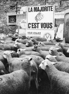 """You are the majority"""" by the French photographer and poet René Maltête"""