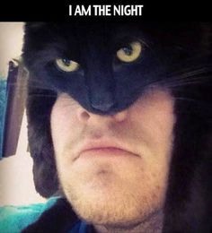 I am the night - batman cat meme - http://jokideo.com/i-am-the-night-batman-cat-meme/