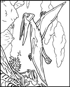 Coloring Sheets Palm Trees Scriptures  TRICERATOP coloring pages