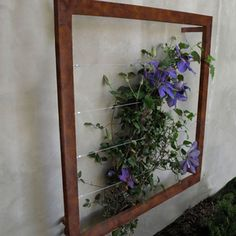 Great idea for the jasmine in the entry courtyard. Would be easy to make with wood and picture hanging wire.