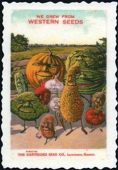 Forcing kids to eat veggies can traumatize them for life by wackystuff, via… Vintage Labels, Vintage Postcards, Vintage Ads, Vintage Prints, Garden Catalogs, Seed Catalogs, Vintage Pictures, Vintage Images, Retro Images