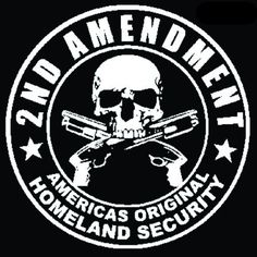 T-Shirts Amendment America's Original Homeland Security Pocket Tee T Shirt