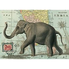 Cavallini Elephant Wrapping Paper