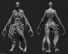 human anatomy model for artists - Google Search | Ref - Anatomy ...