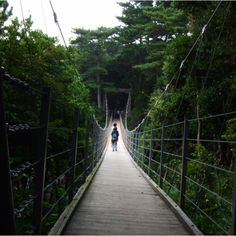 Izu, #Shizuoka, #Japan - another suspended bridge...lots of them in Shizuoka!
