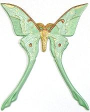 """Luna Moth refrigerator magnet or ornament. Hand-painted, custom-painted. Customized, personalized. Height: 5.75"""". Width: 4.25"""". Thick: .020. Weight: 0.6oz.  Colors shown:  Wings: Different shades of greens, yellow and metallic reddish brown accents. Body: Yellow, and variety shades of browns. Customizing, personalizing the moth for hand-painted personalized gifts and decor. Available in your choice of colors."""