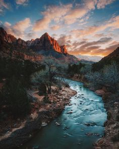 #nature #beautiful #scenery The Watchman from the Bridge. Zion National Park UT. [OC][2856x3870] Instagram: @grantplace
