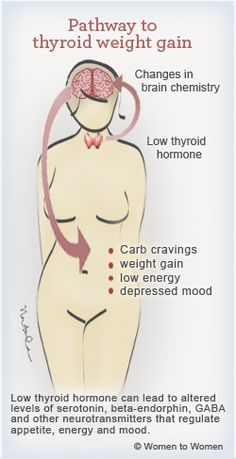 Stop Weight Gain from Thyroid Complications and Get Your Body Back