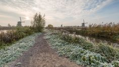 Winter is coming to Kinderdijk by wimzilver