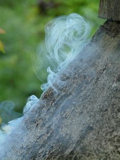 Why do psychic mediums burn sage?