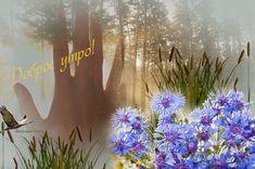 Good Morning Gif, Cards, Ua, English, Quotes, Quotations, English Language, Maps, Playing Cards