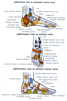 Massage, Foot Reflexology, Body Anatomy, Biology, Medicine, Health Fitness, Therapy, Beauty, Women's Fashion