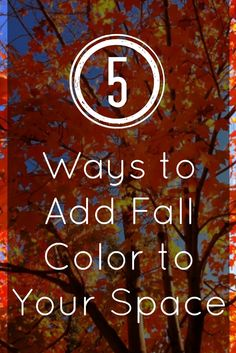 5 Ways to Add Fall Color to Your Space :: Decorating your home for fall. #home #fall #homedecor