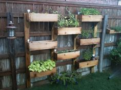"""Fence Garden - I love this. Maybe in my small yard I can do this for my vegetable garden! At least add that splash of color I'm dying for at my """"ghetto house"""" ;)"""