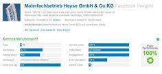 Facebook Insights Maler Heyse Fanpage