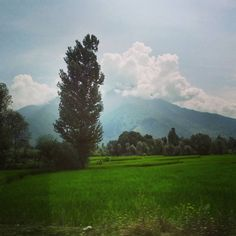 Planning trip to Kashmir? www.mannathouse.com