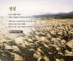 성실(誠實) - 브레인 休 명상 - 브레인피트니스 - 뇌교육 두뇌포털 브레인월드