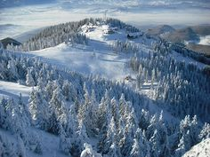 Poiana Brasov in winter Wonderful Places, Beautiful Places, Amazing Places, Famous Castles, Tourist Places, Unique Photo, Eastern Europe, Winter Holidays, Dream Vacations