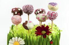 cake pops colomba Best Chef, Trifle, Dessert Recipes, Desserts, Cakes And More, Pretty Good, Cake Pops, Quiche, Favorite Recipes