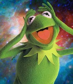 Kermit the Frog Smoking Weed Sapo Kermit, Les Muppets, Sapo Meme, Funny Frogs, Kermit The Frog, Bizarre, Jim Henson, Reaction Pictures, Iphone Wallpaper