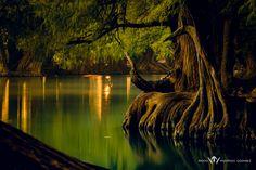 Parque Nacional Lago de Camecuaro - Parque Nacional Lago de Camecuaro, Michoacan Mexico