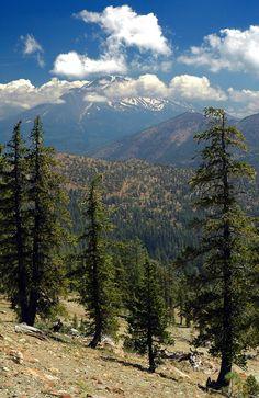 Mt. Shasta, CA - June 2012