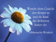 Geburtstag Sprüche An Mama  #geburtstag #mama #spruche Knowledge, Wisdom, Quotes, Life, Eugen Roth, Gb Bilder, Verse, Petra, Pastor