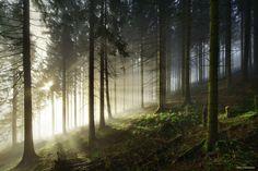"""Filtered Light - <a href=""""http://instagram.com/kilianschoenberger/"""">@kilianschoenberger I N S T A G R A M</a>"""