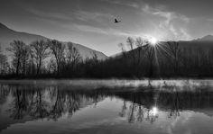 L'acqua che scorre impetuosa nei torrenti di montagna e il sole che si specchia nelle acque di un lago, la rugiada mattutina sulle foglie e la soleggiata calma di un bosco. Sono le bellezze raccontate attraverso gli scatti in bianco e nero del fotografo Alberto Bianchi, esposti dal 10 agosto all'11 …