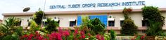 SSLC jobs-Central Tuber Crops Research Institute-CTCRI-Field Assistant/ Field Worker-Pay Scale : Rs. 8000/-Walk-in-Interview-21 November 2016  Central Tuber Crops Research Institute (CTCRI) invites application for the post of Field Assistant/ Field Worker on temporary basis. Walk-in-Interview 21 November 2016.  Job Details :  Post Name : Field Assistant/ Field Worker No of Vacancy : 01 Post Pay Scale : Rs. 8000/- (Per Month) Eligibility Criteria for CTCRI Recruitment :