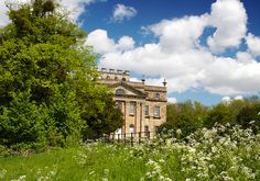 The green shoots of Growth by archidave, via Flickr