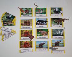 Materiales educativos de aprendizaje temprano por TheLaminatrix