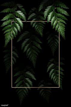 Framed Wallpaper, Cute Wallpaper Backgrounds, Flower Backgrounds, Cute Wallpapers, Green Leaf Background, Tropical Background, Forest Background, Vegetal Concept, Framed Leaves