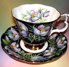Royal Albert - Black Chintz - Special Collections - Provincial Flowers- Prairie Crocus
