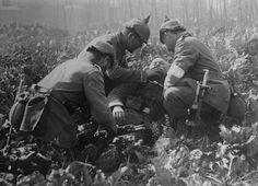 German medics tend a fallen soldier lying in a field of strawberries in Belgium