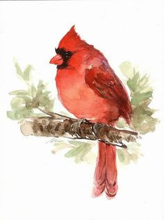 ORIGINAL Watercolor Male Cardinal Red Bird Art by NuFineArt5