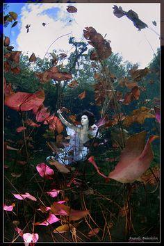 Un photographe plonge ses mannequins dans des mises en scène aquatiques époustouflantes