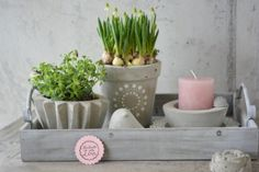 Frühling aus Beton