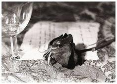 Josef Sudek    The delicacy of worn flowers